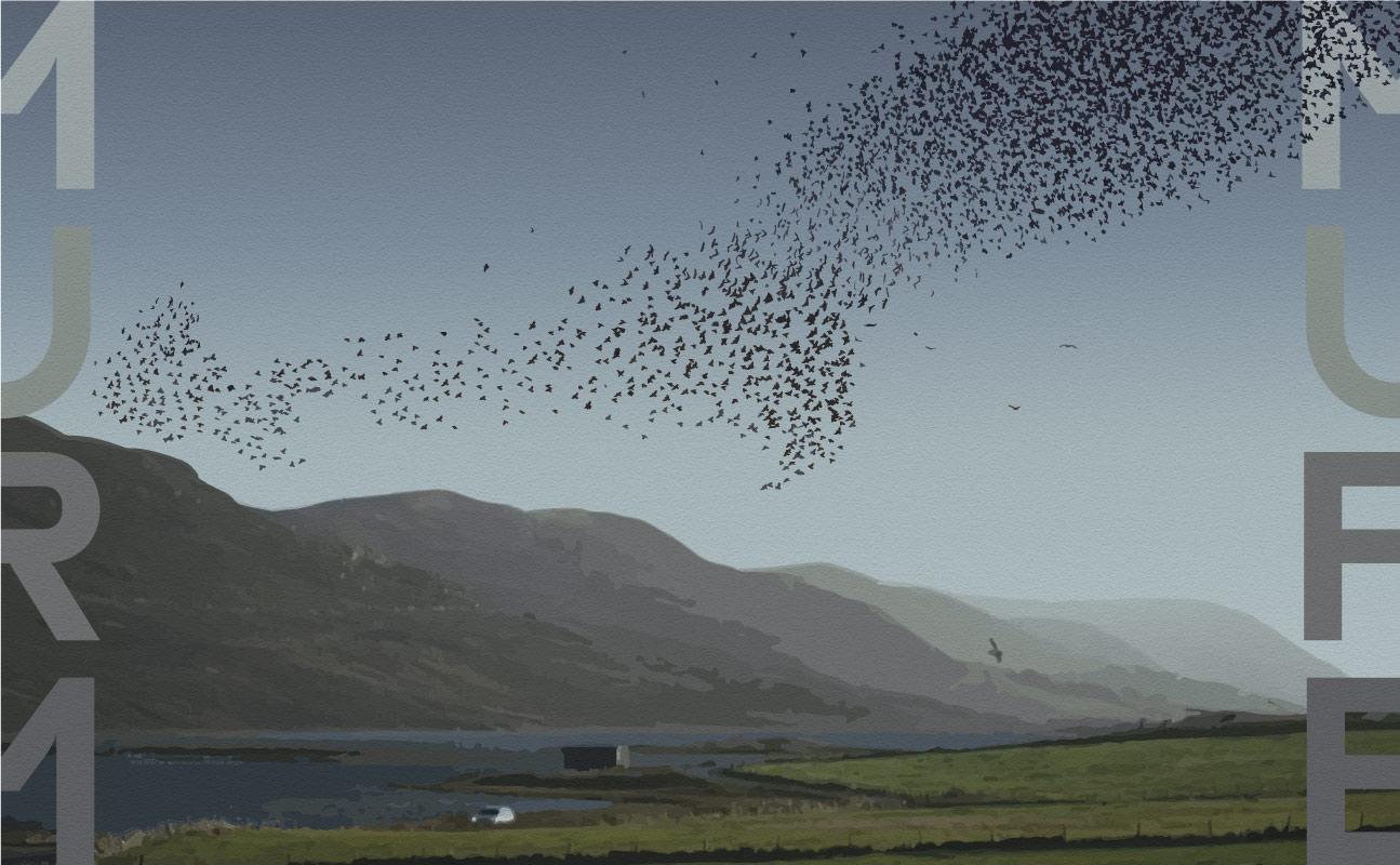 Shetland Murmure